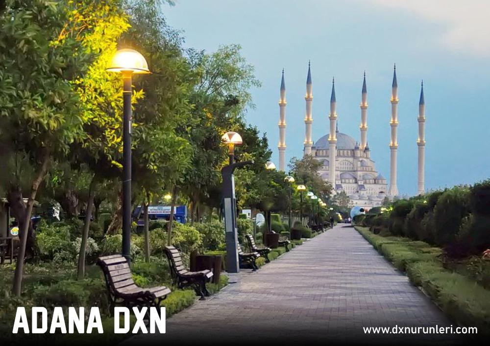 Adana DXN