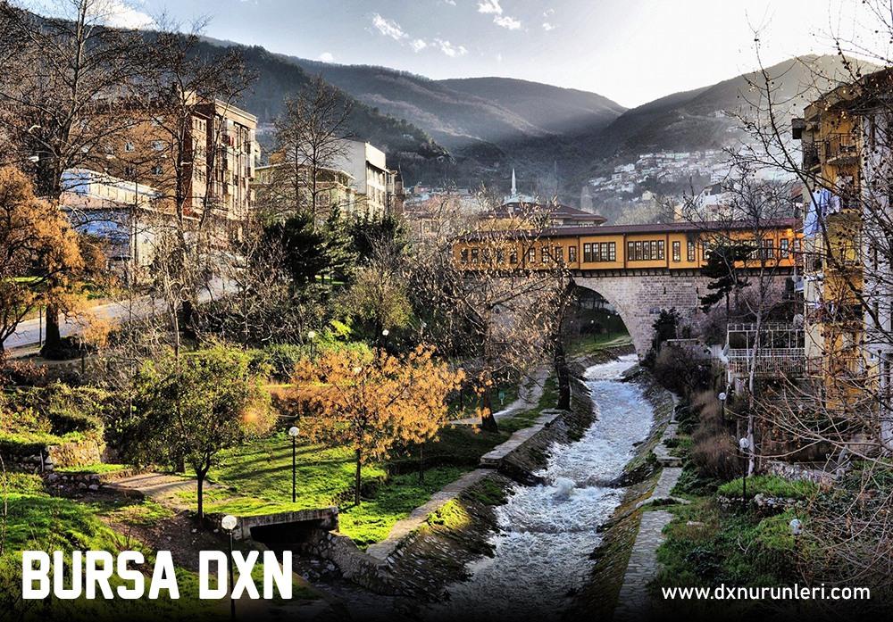 Bursa DXN