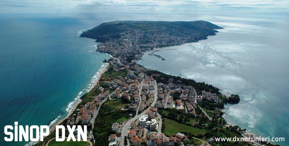 Sinop DXN