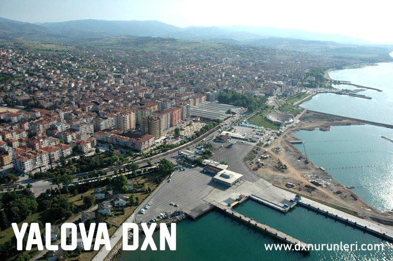 Yalova DXN